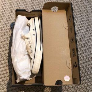 Cream Converse Shoreline sneaker 7 New in Box NIB